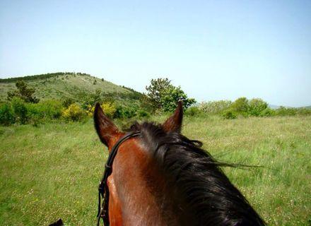 Tag 3 - Montag -Kroatien - Dalmatinisches Hinterland Tag 3