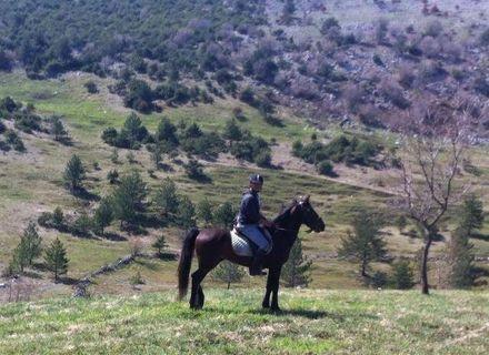 Tag 8 - Samstag -Kroatien - Dalmatinisches Hinterland Tag 8
