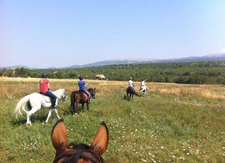 Tag 2  - Sonntag -Kroatien - Dalmatinisches Hinterland Tag 2