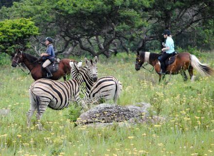 Tag 6-Südafrika Wild Coast Reitsafari Tag 6