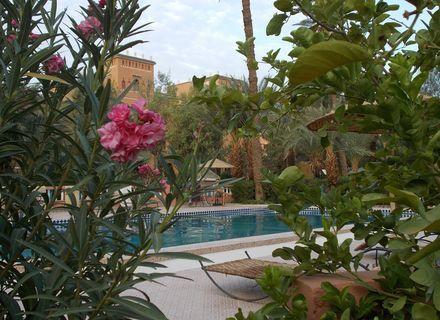 Tag 1  Anreise Ouarzazate-Marokko Tafilalet Hotel Ouarzazate