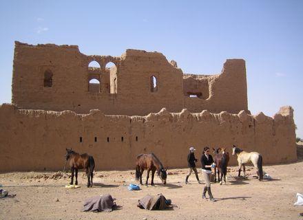 Tag 5 - 19.03,.2020  Oasen & Wüste-Marokko Tafilalet Wanderitt Tag 5
