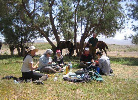 Tag 7 Ouarzazate-Wanderritt Oasen & Sanddünen Tag 7