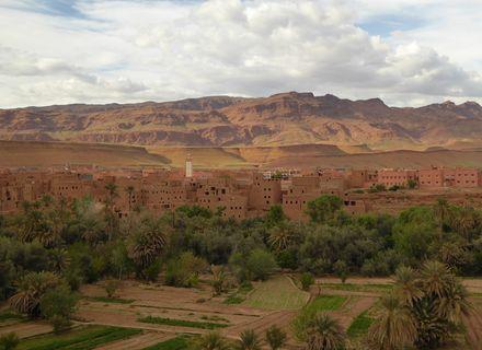 Tag 8 Abreise von Ouarzazate -Wanderritt Oasen & Sanddünen Tag 8