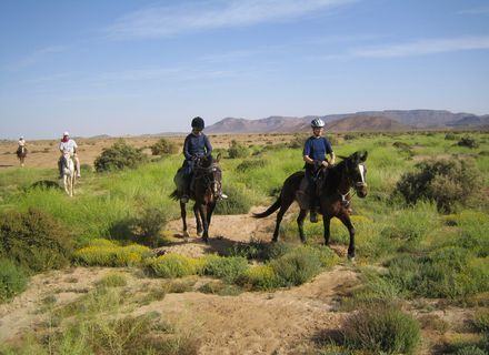 Tag 9 - 23.03.2020  Oase Tinghras -Marokko Tafilalet Wanderitt Tag 9