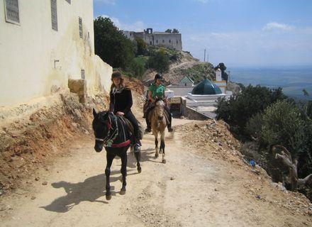 Tag 4   Mikkes - Fès-Marokko Königsstädte Al Ansar
