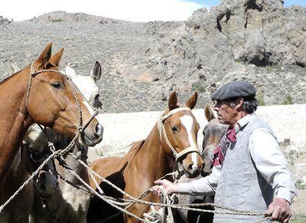Tag 1  Anreise nach San Carlos de Bariloche-Vorbereitung der Pferde
