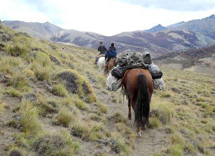 Tag 4  Alto Chubut – Veranada Miranda -Packpferd mit Gepäck