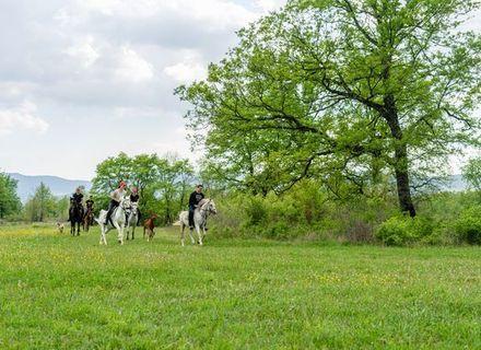Tag 4 -Reiturlaub in der Herzegovina