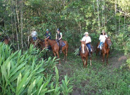 Tag 7 Fazenda Nova und Abreise -