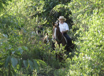 Tag 5 Fazenda Santo Antonio -
