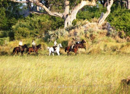 Tag 3 Kujwana – Mokolwane-auf dem Weg zum Mokolwane Camp