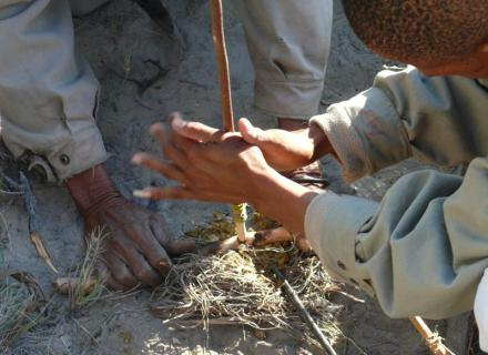 Tag 6 Wanderung mit Buschmännern – Flug nach Maun-