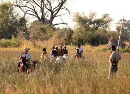 -Das Abenteuer Okavango Delta beginnt