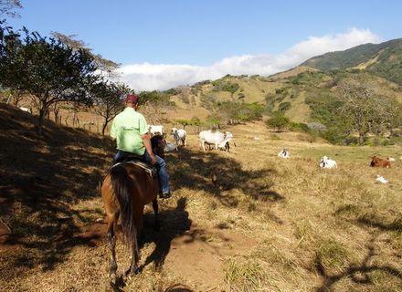 Tag 4-Reiturlaub Hacienda -  Costa Rica