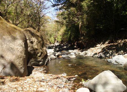 Tag 5 -Reiturlaub Hacienda -  Costa Rica