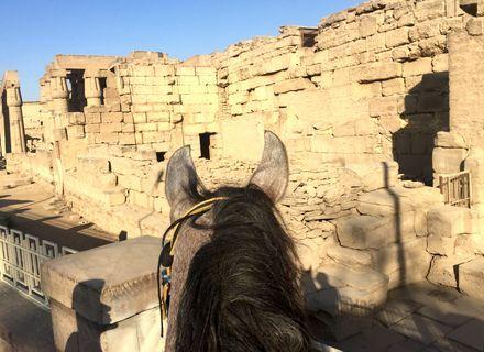 Tag 3 Medinet Habu und Karnak Tempel -