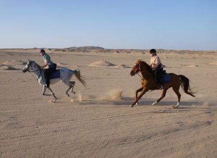 Tag 6 Ritt in die Wüste und Bootsausflug-Flott unterwegs in der Wüste