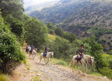 Tag 3  Berchules-Unterwegs von Trevelez nach Berchules