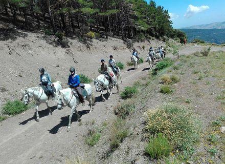 Tag 2 Barranco Habali-La Contraviesa Barranco Habali