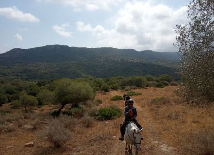 Tag 3   Ojén Tal -Wanderritt Campo de Gibraltar