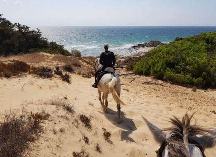 Tag 4   Tarifa-Wanderritt Campo de Gibraltar