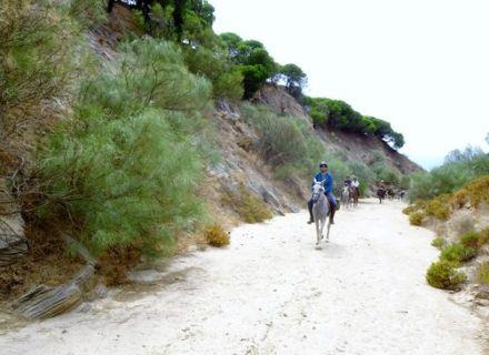 Tag 6  Tarifa - Land der Phönizier-Wanderritt Campo de Gibraltar