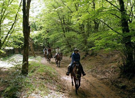 Tag 5  -  San Teodor - Bronte-Sizilien - Wanderritt von Cefalù zum Vulkan Ätna