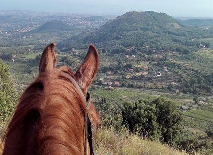 Tag 7  -  Silvestri Krater -Sizilien - Wanderritt von Cefalù zum Vulkan Ätna