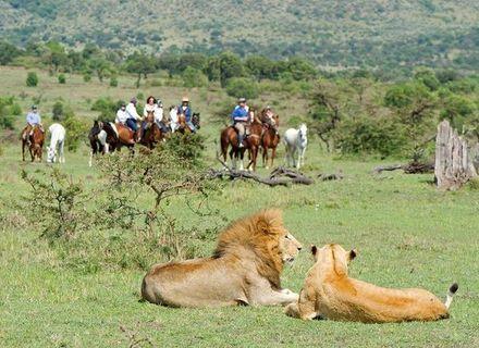 Tag 2 - Mara River Hippo Camp-Kenia Reitsafari Maasai Mara Conservancies