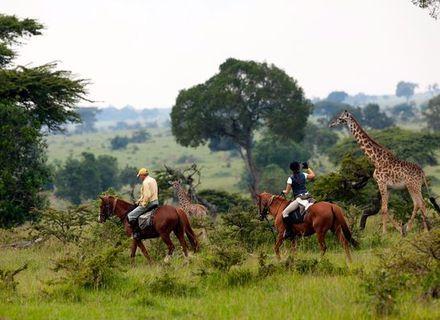Tag 4 - Olare Orok Camp-Kenia Reitsafari Maasai Mara Conservancies