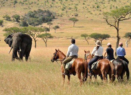Tag 5 - Olare Orok Camp -Kenia Reitsafari Maasai Mara Conservancies
