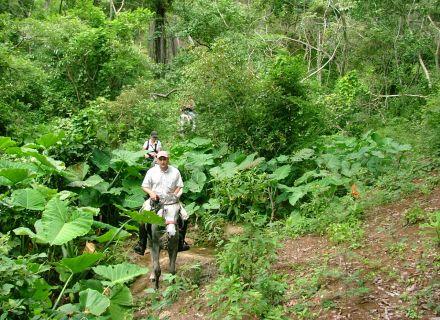 Tag 6  Hacienda La Valdiviana - Reserve La Sepultura - Puerto Arista-