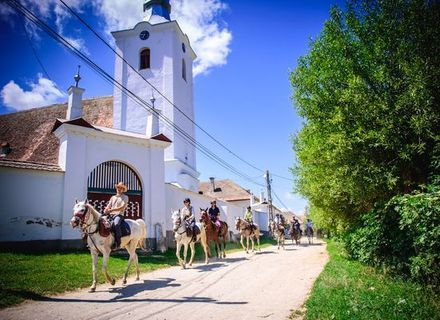 Tag 3 - Batanii Dörfer -Wanderritt Rumänien - Ritt durchs Dorf