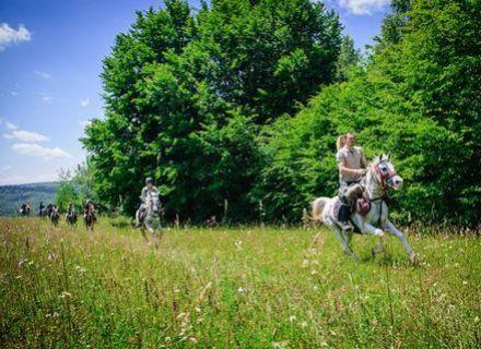 Tag 6 - Zalánpatak-Wanderritt Rumänien - im Galopp über Wiesen
