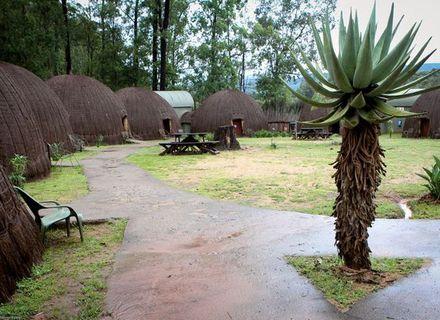 Tag 1 -  Anreise -Tag 1 Mlilwane Rest Camp