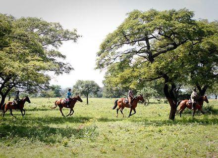 Tag 2 - Mlilwane Reservat-Mlilwane Ausritt