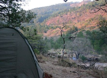 Tag 3 - Klipspringer Camp-Klipspringer Camp