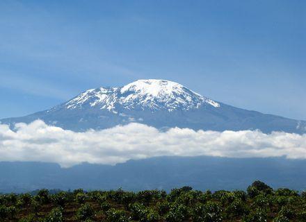Tag 8 Abreise -Kilimanjaro