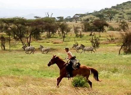 Tage 2 und 3   Reitsafari im West-Kilimanjaro Wildgebiet-
