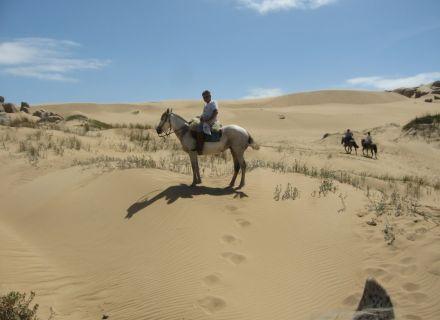 Tag 6 Cabo Polonio – Treibsand & Seelöwen-