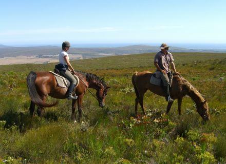 Tag 2 Farm 215 - Baviaansfontein / Bodhi Khaya-