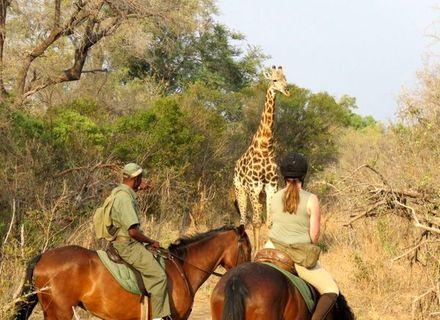 Tag 4-Victoria Falls Game Reserve