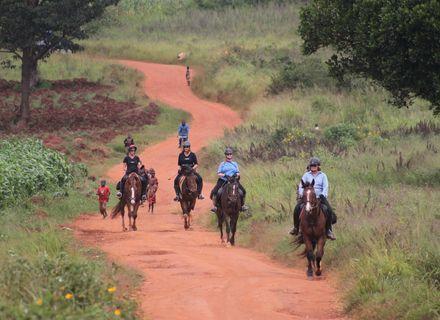 Tag 1-Uganda Wanderritt am Nil Tag 1