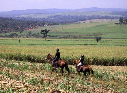 Tag 3 -Uganda Wanderritt am Nil Tag 3