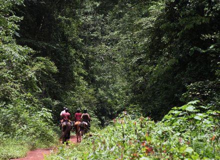 Tag 4 -Uganda Wanderritt am Nil Tag 4