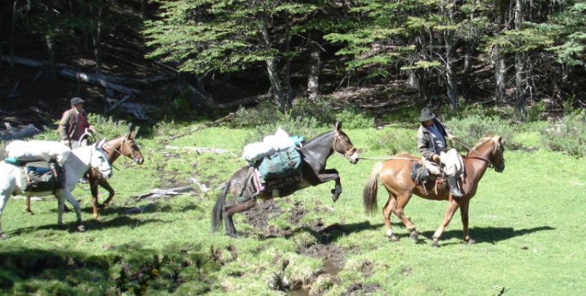 Wanderritte und Reitsafaris