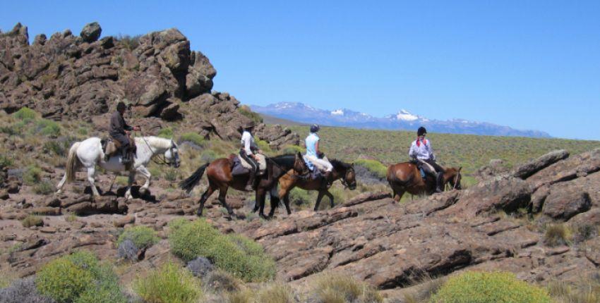 Reiturlaub mit Cattle Work in Patagonien