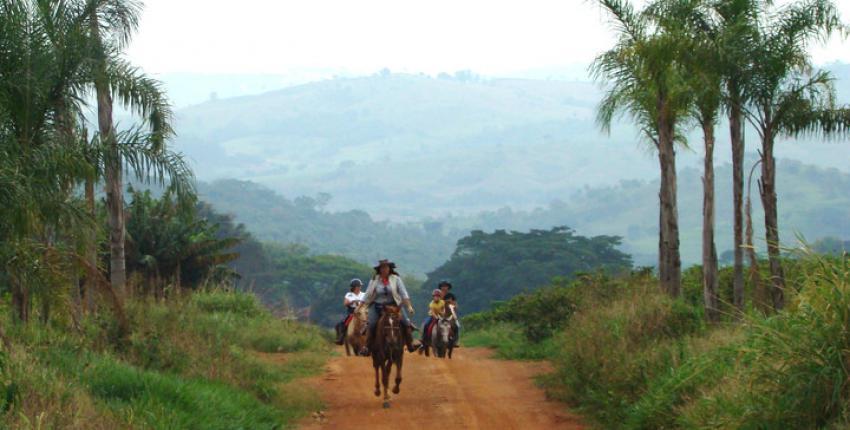 Wanderritt durch Kaffee-Plantagen