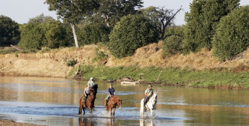 ​Reitsafari Two Mashatus im Tuli Block